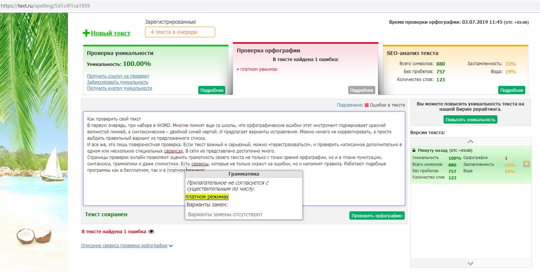 Пример работы проверки текста на Текст.ру