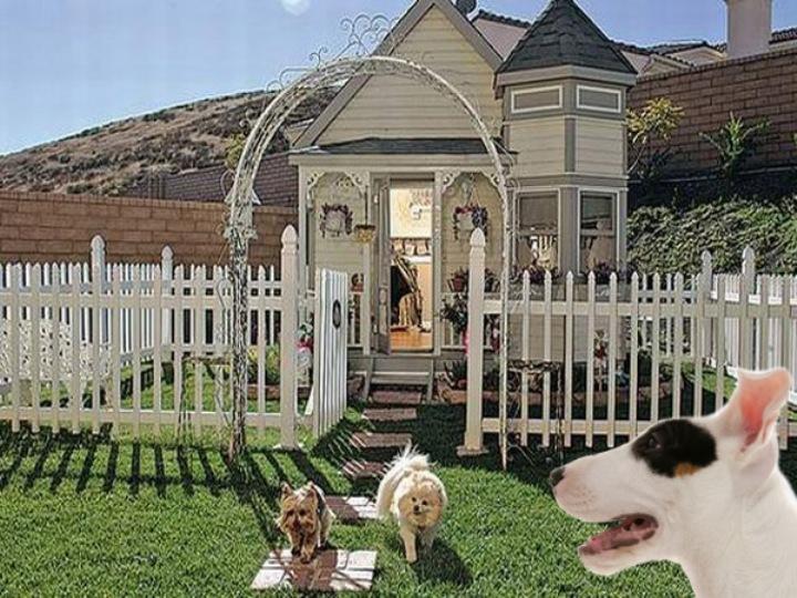 Жильцы особняка Victorian Dog House