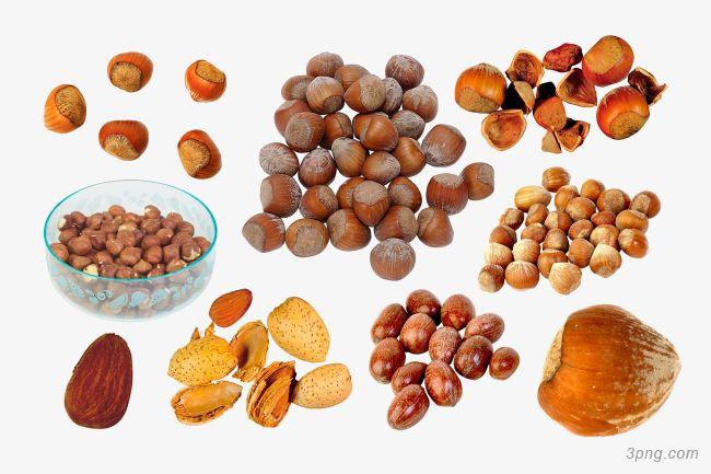 Самый дорогой орех в мире: цена и фото макадемии