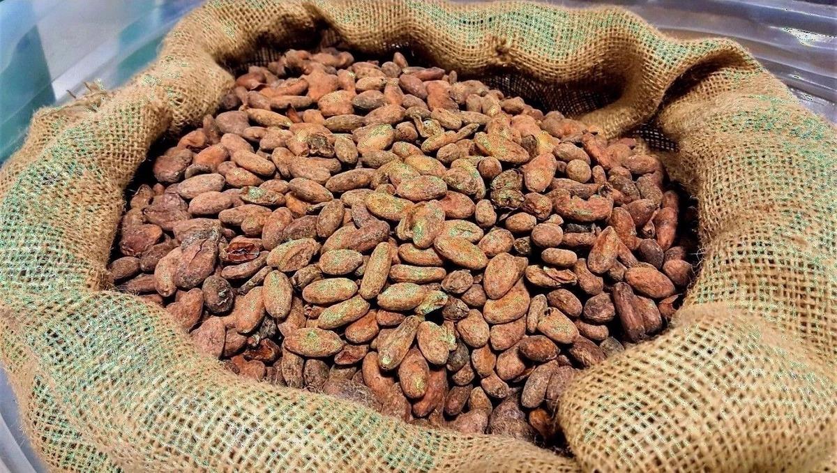 Какао-бобы National